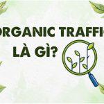 Organic Traffic Là Gì? Tầm quan trọng của Organic Traffic trong SEO