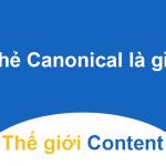 Canonical url là gì - canonical url có vai trò như thế nào