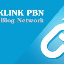 Các plugin hỗ trợ phục hồi PBN hiệu quả
