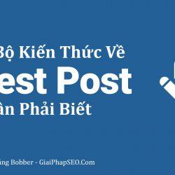 Tiết lộ cách sử dụng Guest Post trong SEO hiệu quả mà bất cứ SEOer nào cũng cần biết